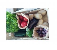 "Panier de fruits & légumes ""BIO"""